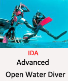 Tauchcenter-Wuppertal_Meeresauge-Scuba Diving-Tauchen_lernen-IDA-AOWD