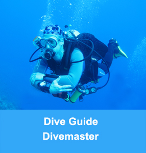 tauchlehrer_college_nord_tauchlehrer-instructor-diveguide-divemaster
