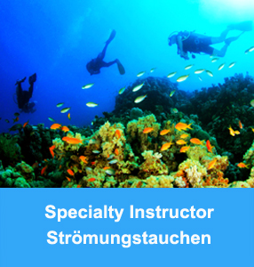 tauchlehrer_college_nord_tauchlehrer-specialty_instructor-stroemung